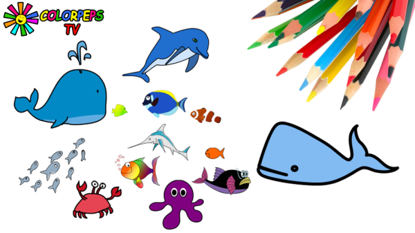 How to Draw Fish, Crab, Octopus and Coloring Sea Fishes for Kids